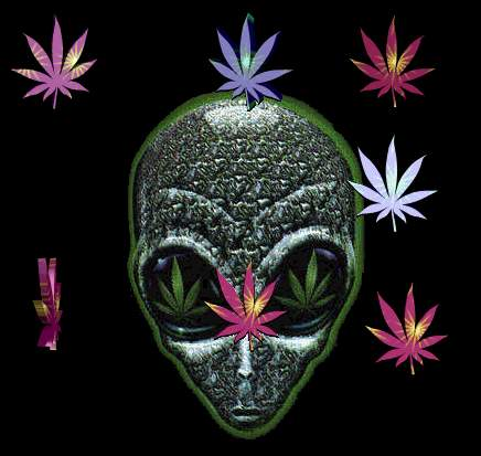 cannabis wallpaper. FREE CANNABIS WALLPAPERS